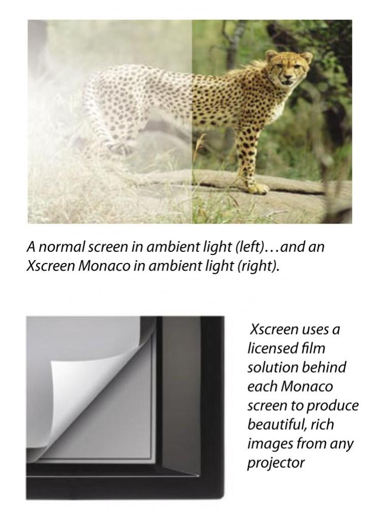 X-BrochureLetter.indd